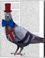 London Pigeon Fine-Art Print