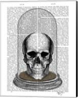 Skull In Bell Jar Fine-Art Print
