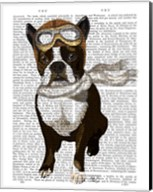 Boston Terrier Flying Ace Fine-Art Print