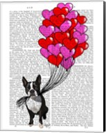 Boston Terrier And Balloons Fine-Art Print