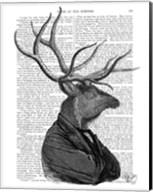 Deer Portrait 1 Fine-Art Print