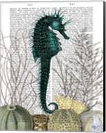 SeaHorse and Sea Urchins Fine-Art Print