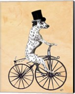 Dalmatian On Bicycle Fine-Art Print