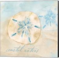Watercolor Shell Sentiments IV Fine-Art Print