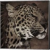 Animal Instincts Dulled Fine-Art Print