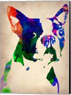 Boston Terrier Watercolor Fine-Art Print