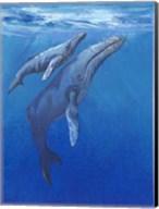 Under Sea Whales I Fine-Art Print