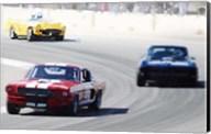 Mustang and Corvette Racing Fine-Art Print