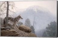 Misty Lookout Fine-Art Print