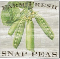 Farm Fresh Peas Fine-Art Print