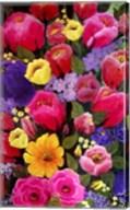 Pink Spring Flowers Fine-Art Print