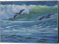 Pelican Skimmers Fine-Art Print