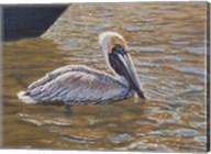 Sparkling Water Pelican Fine-Art Print