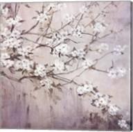 White Elegance Fine-Art Print