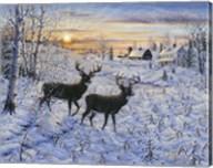 Two Deer In The Moonlight Fine-Art Print