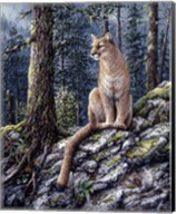 King Of The Forest Fine-Art Print