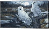 Snowy Owls Fine-Art Print