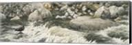 Swift Water Fine-Art Print
