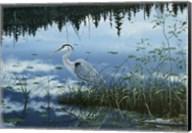 Blue Reflections Fine-Art Print