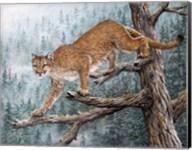 High Climber Fine-Art Print
