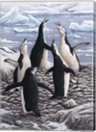 Chorus Chinstrap Penguins Fine-Art Print