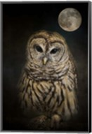 Barred Owl And The Moon Fine-Art Print