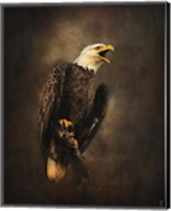 Crying for the Lost Bald Eagle Fine-Art Print