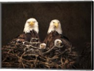 Family Is Forever Bald Eagles Fine-Art Print