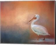 Pelican Walk Fine-Art Print