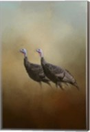 Wild Turkey At Shiloh Fine-Art Print