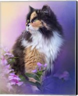 Calico Kitty In The Garden Fine-Art Print