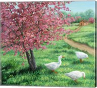 Cherry Blossom Time Fine-Art Print