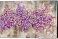 Lavender Bells Fine-Art Print