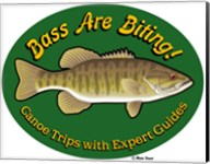 Bass Are Biting Fine-Art Print