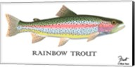 Rainbow Trout Fine-Art Print