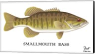 Smallmouth Bass Fine-Art Print
