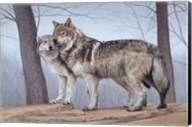 Two Wolves Fine-Art Print