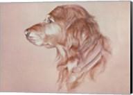 Dog Eight Fine-Art Print