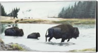 Spirit Of Yellowstone Fine-Art Print