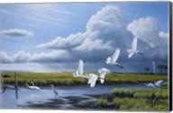 Summer Storm Egrets Fine-Art Print