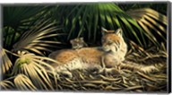 Sunny Spot Bobcat with Kittens Fine-Art Print