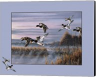 Ducks In Flight 1 Fine-Art Print