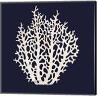 Contemporary Coastal Coral Fine-Art Print