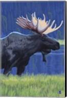 Moose 1 Fine-Art Print