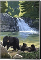 Black Bear with Cubs 3 Fine-Art Print