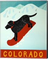 Colorado Snowboard Black Fine-Art Print