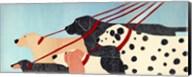 Dog Walker Fine-Art Print