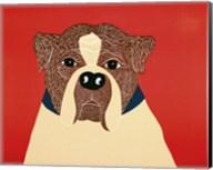 We Can Choose Boxer Fine-Art Print