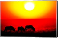 Wildebeests, Etosha National Park, Namibia Fine-Art Print
