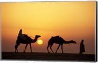 Caravan, Morocco Fine-Art Print